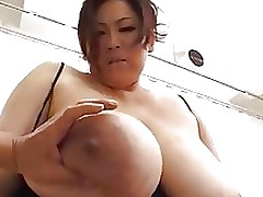japan bbw major apples boobs boobsy heavy eastern